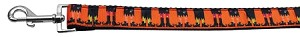 Witches Brew Nylon Ribbon Dog Collars 1 wide 4ft Leash