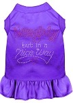 Rhinestone Naughty but in a nice way Dress Purple XS (8)
