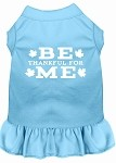 Be Thankful for Me Screen Print Dress Baby Blue XS (8)