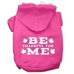 Be Thankful for Me Screen Print Pet Hoodies Bright Pink Size XS (8)