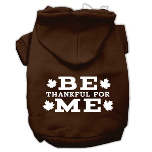 Be Thankful for Me Screen Print Pet Hoodies Brown Size XXXL (20)