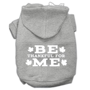Be Thankful for Me Screen Print Pet Hoodies Grey Size XXL (18)