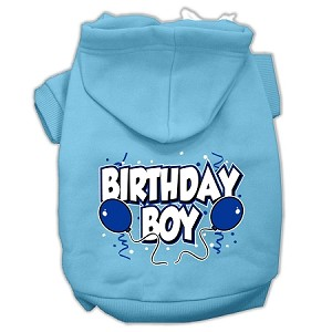 Birthday Boy Screen Print Pet Hoodies Baby Blue Size XXXL (20)