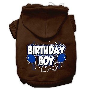 Birthday Boy Screen Print Pet Hoodies Brown Size Sm (10)