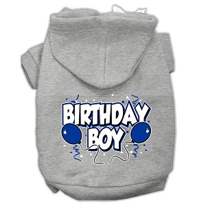 Birthday Boy Screen Print Pet Hoodies Grey Size XL (16)