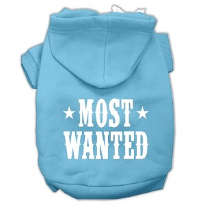 Most Wanted Screen Print Pet Hoodies Baby Blue Size Lg (14)