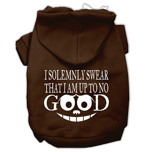 Up to No Good Screen Print Pet Hoodies Brown Size Med (12)