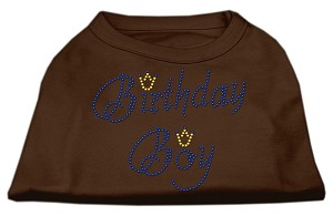 Birthday Boy Rhinestone Shirts Brown Sm (10)