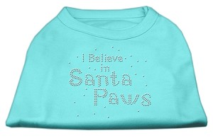 I Believe in Santa Paws Shirt Aqua XXL (18)
