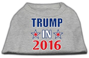 Trump in 2016 Election Screenprint Shirts Grey XXXL (20)