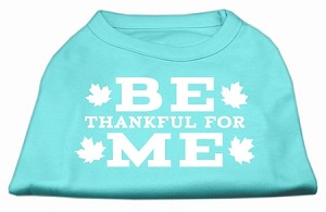Be Thankful for Me Screen Print Shirt Aqua M (12)
