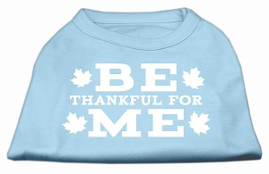 Be Thankful for Me Screen Print Shirt Baby Blue XXL (18)