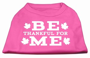 Be Thankful for Me Screen Print Shirt Bright Pink XXL (18)