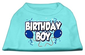 Birthday Boy Screen Print Shirts Aqua Lg (14)