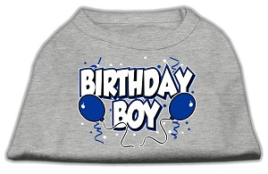 Birthday Boy Screen Print Shirts Grey Lg (14)