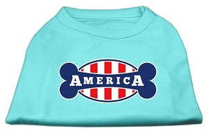 Bonely in America Screen Print Shirt Aqua XXXL (20)