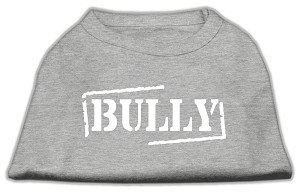 Bully Screen Printed Shirt Grey Sm (10)