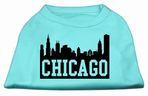 Chicago Skyline Screen Print Shirt Aqua XS (8)