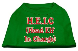 Head Elf in Charge Screen Print Shirt Emerald Green XXL (18)