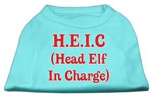 Head Elf In Charge Screen Print Shirt Aqua XXXL (20)