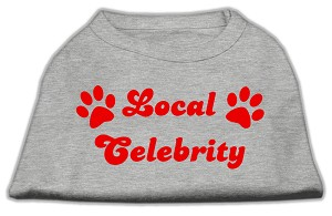 Local Celebrity Screen Print Shirts Grey XS (8)