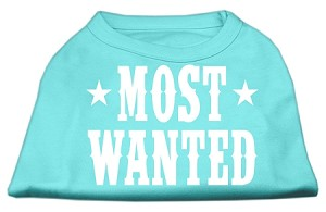 Most Wanted Screen Print Shirt Aqua Lg (14)