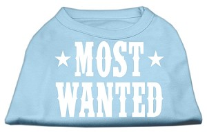 Most Wanted Screen Print Shirt Baby Blue Sm (10)