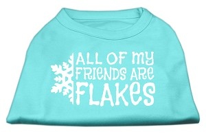 All my friends are Flakes Screen Print Shirt Aqua XS (8)
