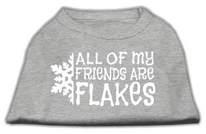 All my friends are Flakes Screen Print Shirt Grey XXXL(20)