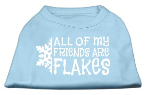All my friends are Flakes Screen Print Shirt Baby Blue S (10)
