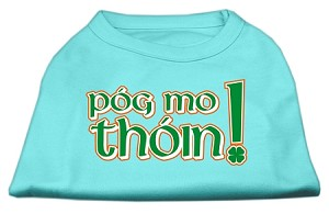 Pog Mo Thoin Screen Print Shirt Aqua XXL (18)