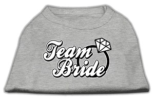 Team Bride Screen Print Shirt Grey XXXL (20)