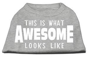 This is What Awesome Looks Like Dog Shirt Grey Med (12)