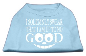Up to No Good Screen Print Shirt Baby Blue Lg (14)