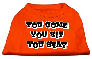 You Come, You Sit, You Stay Screen Print Shirts Orange Med (12)