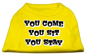You Come, You Sit, You Stay Screen Print Shirts Yellow XXL (18)