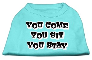 You Come, You Sit, You Stay Screen Print Shirts Aqua XL (16)