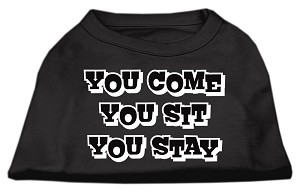 You Come, You Sit, You Stay Screen Print Shirts Black S (10)