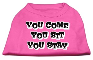 You Come, You Sit, You Stay Screen Print Shirts Bright Pink XXXL(20)