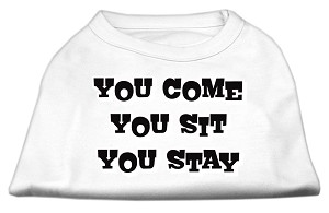You Come, You Sit, You Stay Screen Print Shirts White XXL (18)