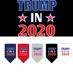 Trump In 2020 Screen Print Bandana