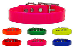 Plain Tropical Jelly Collars