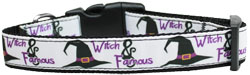 Witch and Famous Nylon Dog Collar