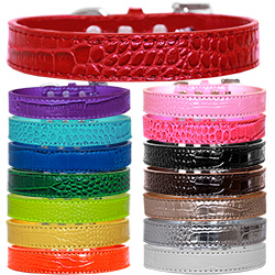 Tulsa Plain Croc Dog Collar