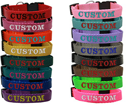Custom Embroidered Nylon Dog Collars