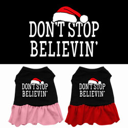 Don't Stop Believin' Screen Print Dress