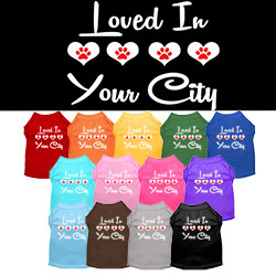 Loved in Washington D.C. Screen Print Souvenir Dog Shirt