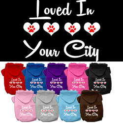 Loved in Washington D.C. Screen Print Souvenir Dog Hoodie