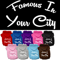Famous in Washington D.C. Screen Print Souvenir Dog Hoodie