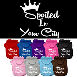 Spoiled in Washington D.C. Screen Print Souvenir Dog Hoodie